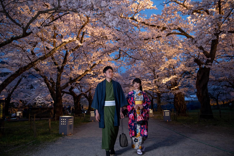 オープン2周年記念ー着物で夜桜プラン(20時返却)